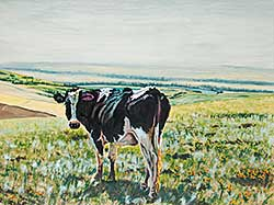 #776 ~ Olson - Cow Above Cochrane