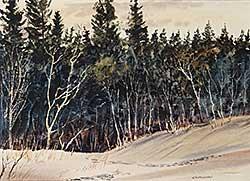 #844 ~ Sandeman - Untitled - Trees in Snow