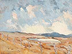 #643 ~ Ellison - Untitled - Prairie Storm
