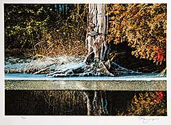 #665 ~ Danby - Untitled - Tree with Melting Snow  #70/100