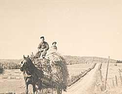 #762 ~ Johnston - Carting Hay