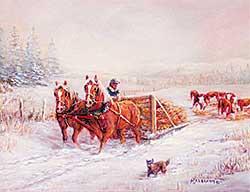 #601 ~ Abraham - Alberta Winter