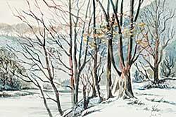 #735 ~ Vest - Untitled - Winter Creek