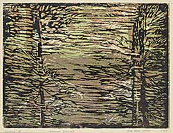 #476.3 ~ Wieser - Minnewanka Reflected  #A/P