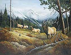 #433 ~ Fisher - Untitled - Herd of Elk