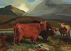 #306 ~ Corbould - Highland Cattle