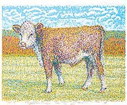 #38 ~ Fafard - Calf Monet  #35/60