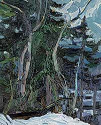 #1210.4 ~ Nix - Dead Cotton Wood Trees