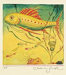 #26 ~ van Sandwyk - Three Generations [Fish, Egg and Fry]  #A.P.