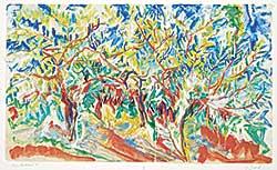 #1129 ~ Evrard - Olive Orchard IV