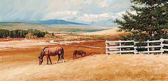 #26 ~ Freeman - Ranching Country