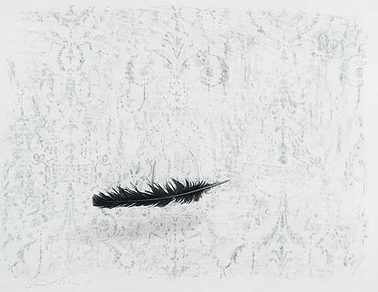 #487 ~ Esler - Untitled - Falling Feather