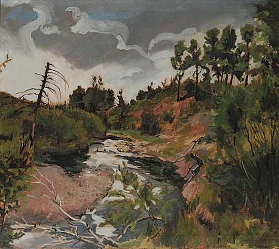 #107 ~ Vervoort - Bragg Creek Storm 1979