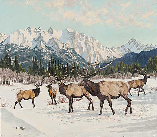 #614 ~ Ashley - Untitled - Elk in the Mountains
