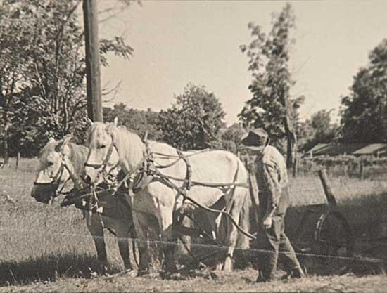 #758 ~ Johnston - A Farmer Observing his Horses
