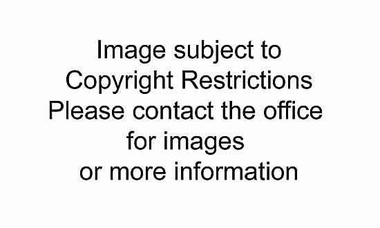 #325 ~ Riopelle - Affiche avant la lettre no 120  #145/150