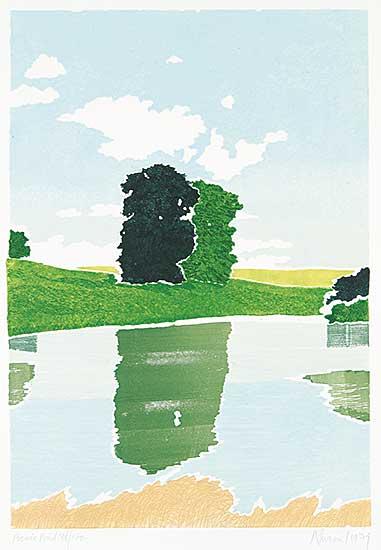 #364 ~ Newcomb - Picnic Pond  #38/100