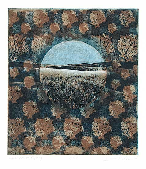 #633 ~ Esler - Full Moon Rising  #41/50