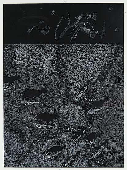 #29 ~ Fafard - Moon's Eye  #17/50