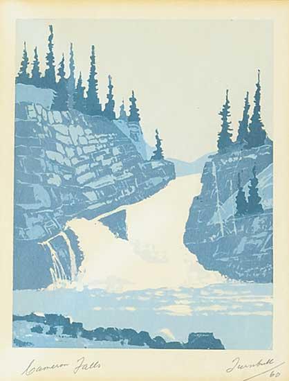 #1254 ~ Turnbull - Cameron Falls