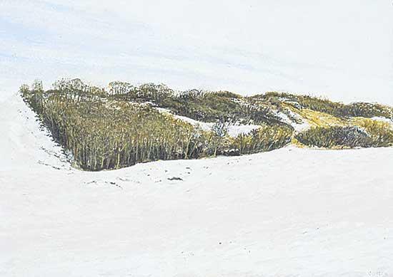 #1197 ~ Voyer - Alberta Landscape