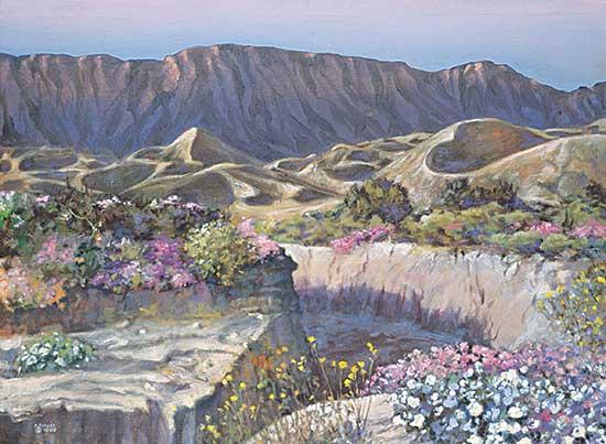 #108 ~ Vallee - De Anza Borrego Desert