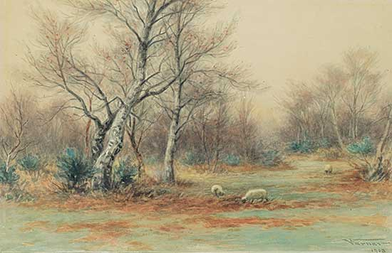#109 ~ Verner - Untitled - Sheep in the Forest