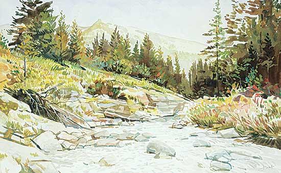 #1200 ~ Vest - Cameron Creek, Waterton National Park