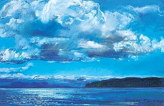 #425 ~ Field - Untitled - Johnstone Strait