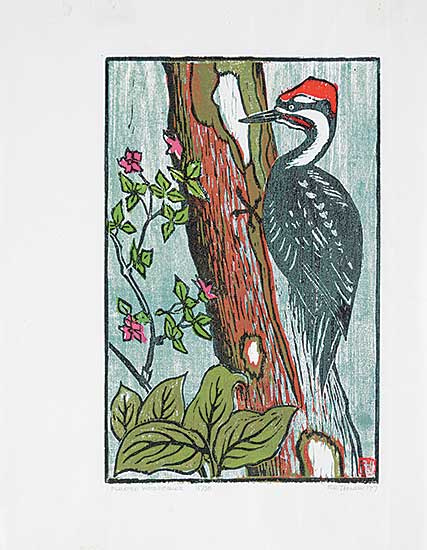 #38 ~ Johnston - Pileated Woodpecker  #15/30