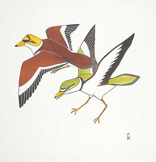 #183 ~ Inuit - Coastal Birds #33/50