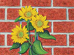 #1084.2 ~ Grant - Untitled - Sunflowers