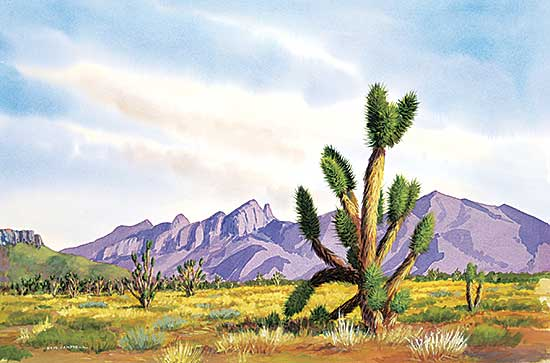 #1068 ~ Campbell - Joshua Tree
