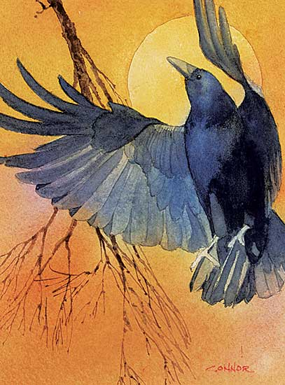#1092 ~ Connor - Untitled - Crow and Sun