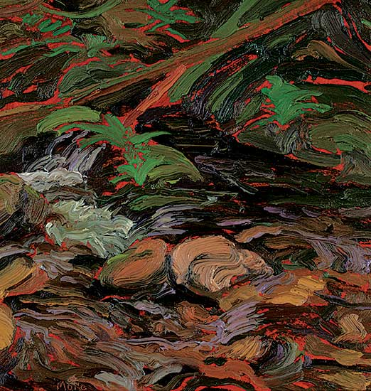 #1268 ~ More - Ferns and Water Forms, Goldstream, B.C.