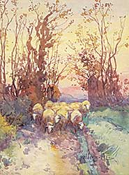 #443 ~ Ede - Untitled - Taking the Flock Home