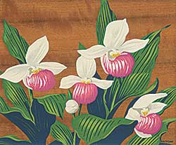 #1041 ~ Casson - Untitled - Orchids