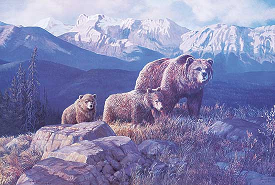 #1163 ~ Levesque - Valley of the Grizzly  #26/550