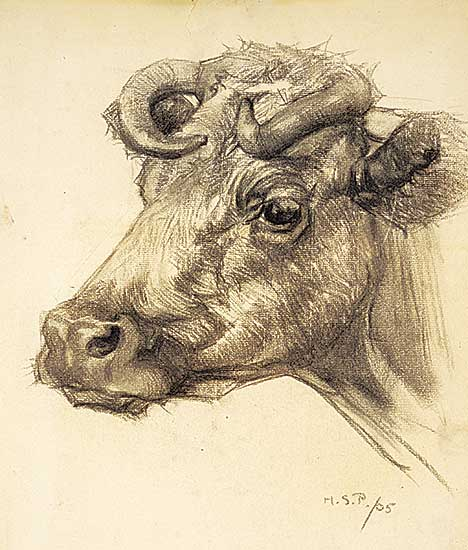 #1237 ~ Palmer - Untitled - Profile of a Cow with Horns